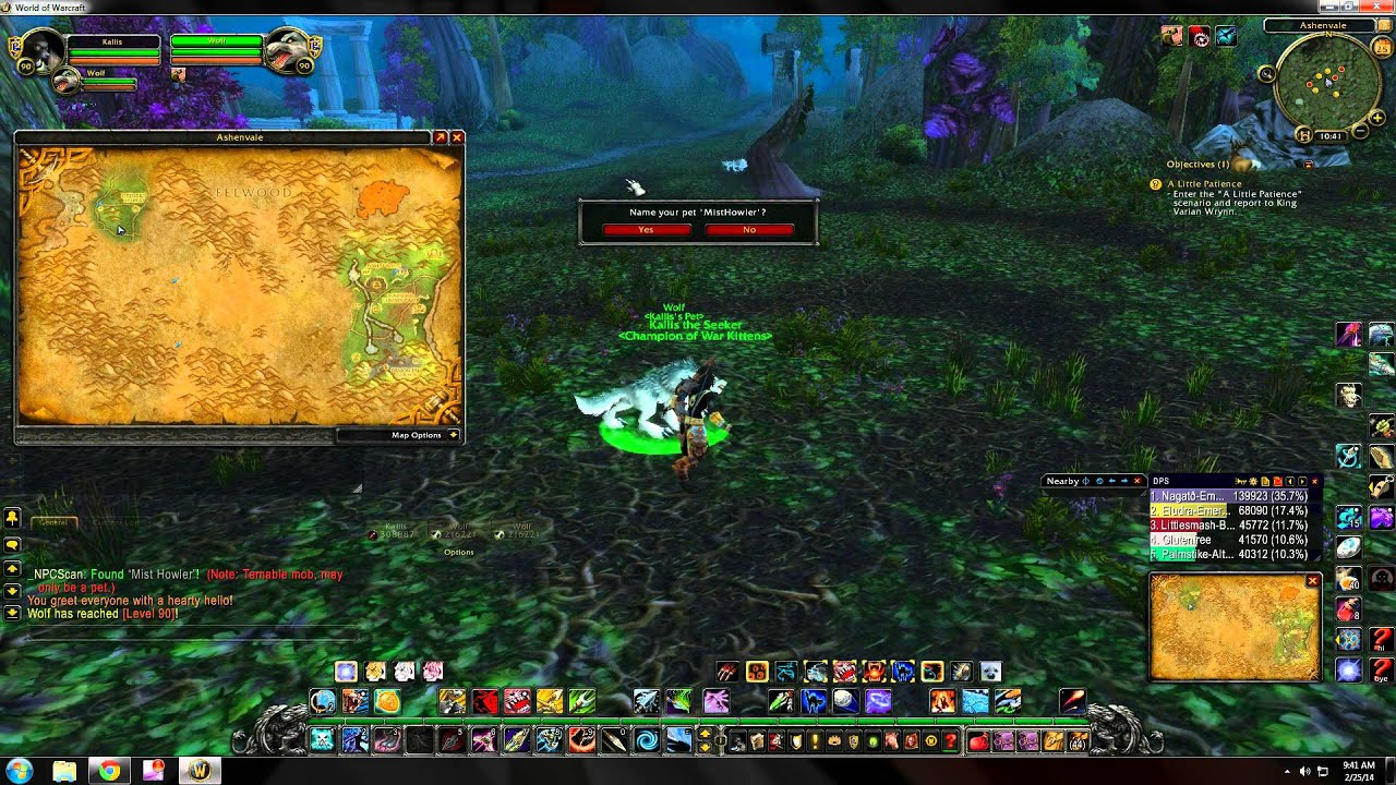 World Of Warcraft Rare Hunter Pet Locations Ashenvale Youtube