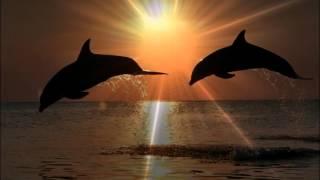 Природа Байкала в сочетании с морем.(Красивое романтическое видео о природе #озера_Байкал отношениях, любви. Музыкальное сопровождение из матер..., 2016-04-16T16:38:50.000Z)