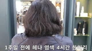 50대 여성  헤나염색모발 모근 볼륨셋팅파마