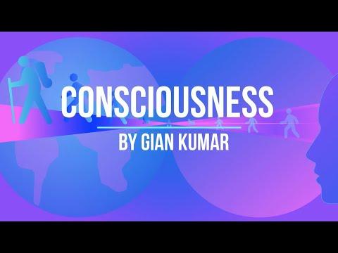Consciousness by Gian Kumar