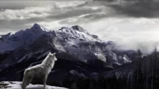Кабриолет - Белый снег