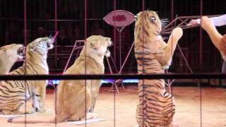 Circus Krone 2011: Premiere 2. Winterspielzeit München 01.02.2011