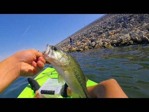 Kayak Fishing On The Dam Of Lake Grapevine ( 5 Species Caught!)