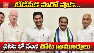 tdp ex mla thota trimurthulu join in ysrcp party ap political news cm jagan yoyo tv channel