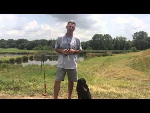Professional Dog Trainer J. Paul Jackson Explains Direct An