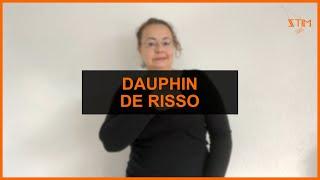 BIOLOGIE MARIN - Dauphin de Risso