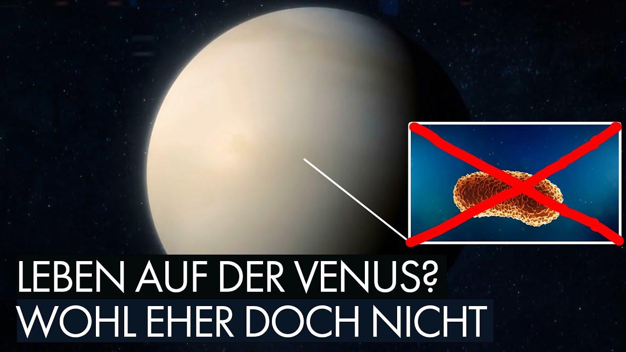 Leben auf der Venus? - Wohl eher doch nicht
