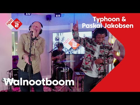 Typhoon - Walnootboom