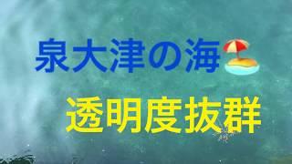 fishingmax 泉大津店 2/5 こんなに透き通っているのは初めて thumbnail