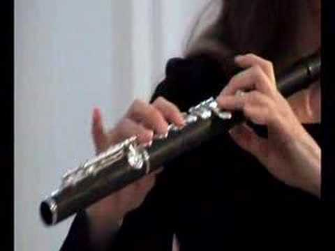 Carmen Fantasy for Flute &  (Karin Leitner)