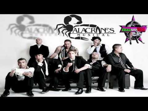 El Sinaloense - Alacranes Musical (Duranguense)™