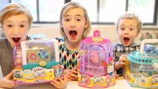 TOY REVIEW: Little Live Pets