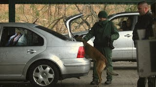 Can US border agents lawfully search you? - BBC News