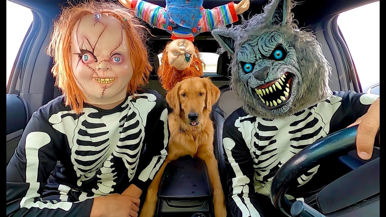Wolf Surprises Chucky & Puppy with Car Ride Chase!