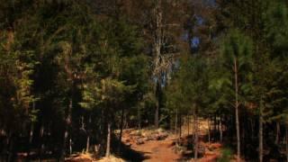 Reserva Cerro Grande