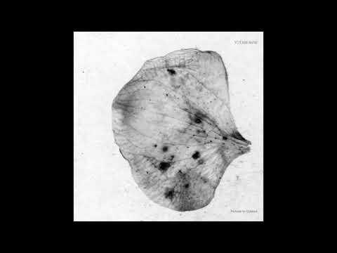 Yotam Avni - Modern Matters [Stroboscopic Artefacts SA032]