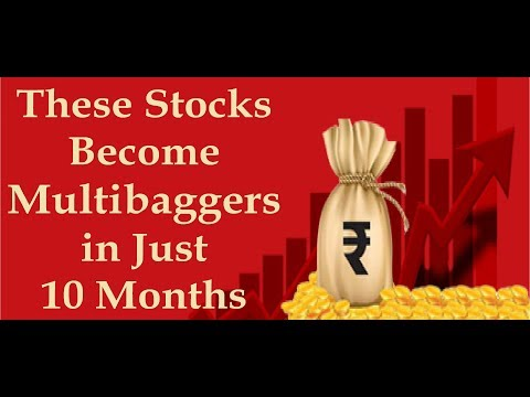 In Just 10 Months These Stocks Become Multibaggers | Created Huge Wealth for Investors |