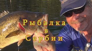 Константин Кузьмин. Рыбалка в Сербии.