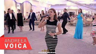 Andreea Voica - Ardeleana (Nunta Stana & Alin)