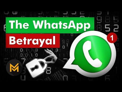 How WhatsApp Makes Money: The INSANE Story of WhatsApp