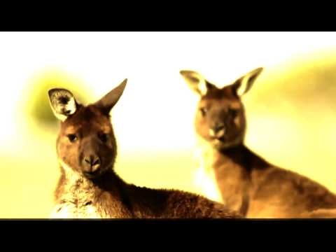 Adelaide Post Conference 2013 - There's Something for Everyone At Kangaroo Island