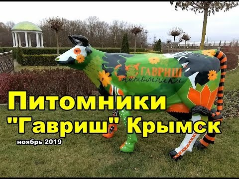 Новинки для цветников. Гавриш. Крымск
