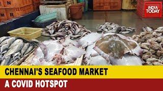 Battling COVID-19: Chennai's Sea Food Market A Coronavirus Hotspot