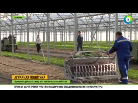 Армения развивает тепличные хозяйства