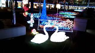 2019クリスマス@海浜幕張 thumbnail