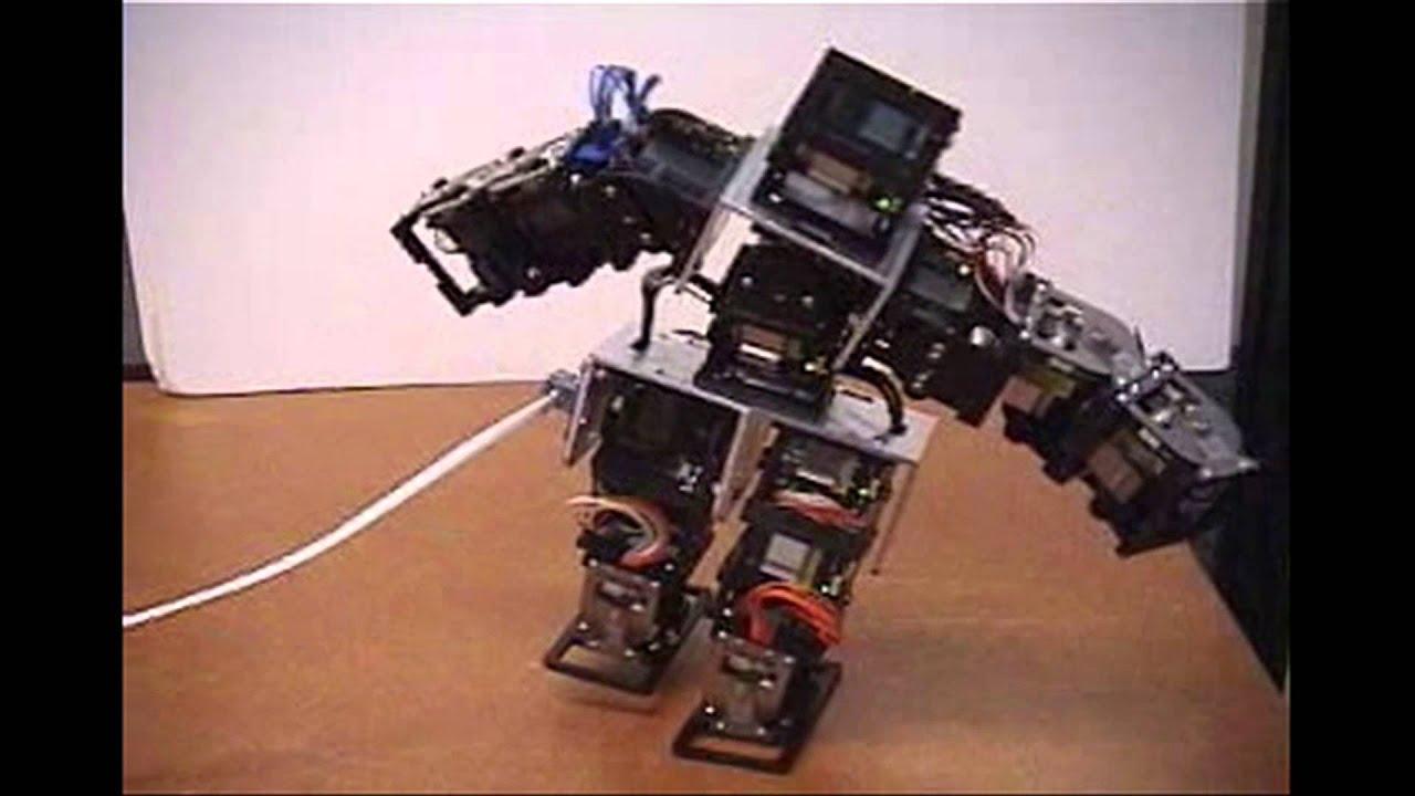 Birth of the Robots