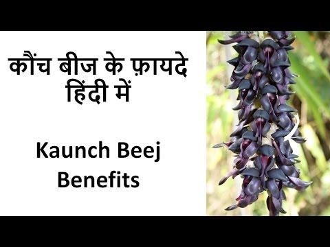 Kaunch Beej Benefits | कौंच बीज के फ़ायदे हिंदी में from YouTube · High Definition · Duration:  6 minutes 29 seconds  · 86.000+ views · uploaded on 29-1-2017 · uploaded by Aman Chhikara
