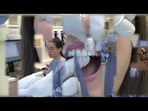 UNC School of Dentistry Dental Hygiene Program
