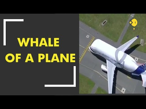 Airbus 'Beluga Whale' Takes Flight For The First Time
