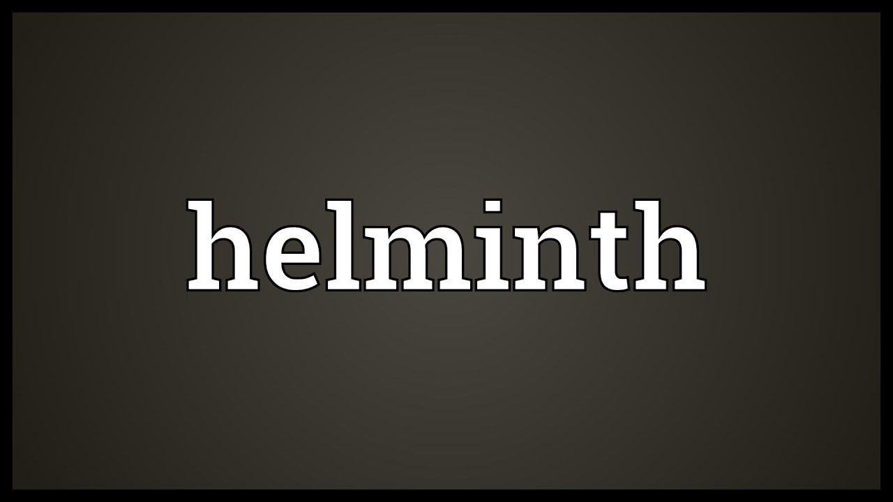 Meaning for helminth. What does helminth mean What does helminth mean