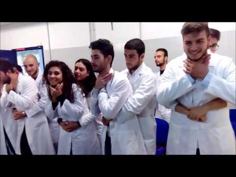 1 c i di simulazione in medicina e approccio al for Simulazione medicina