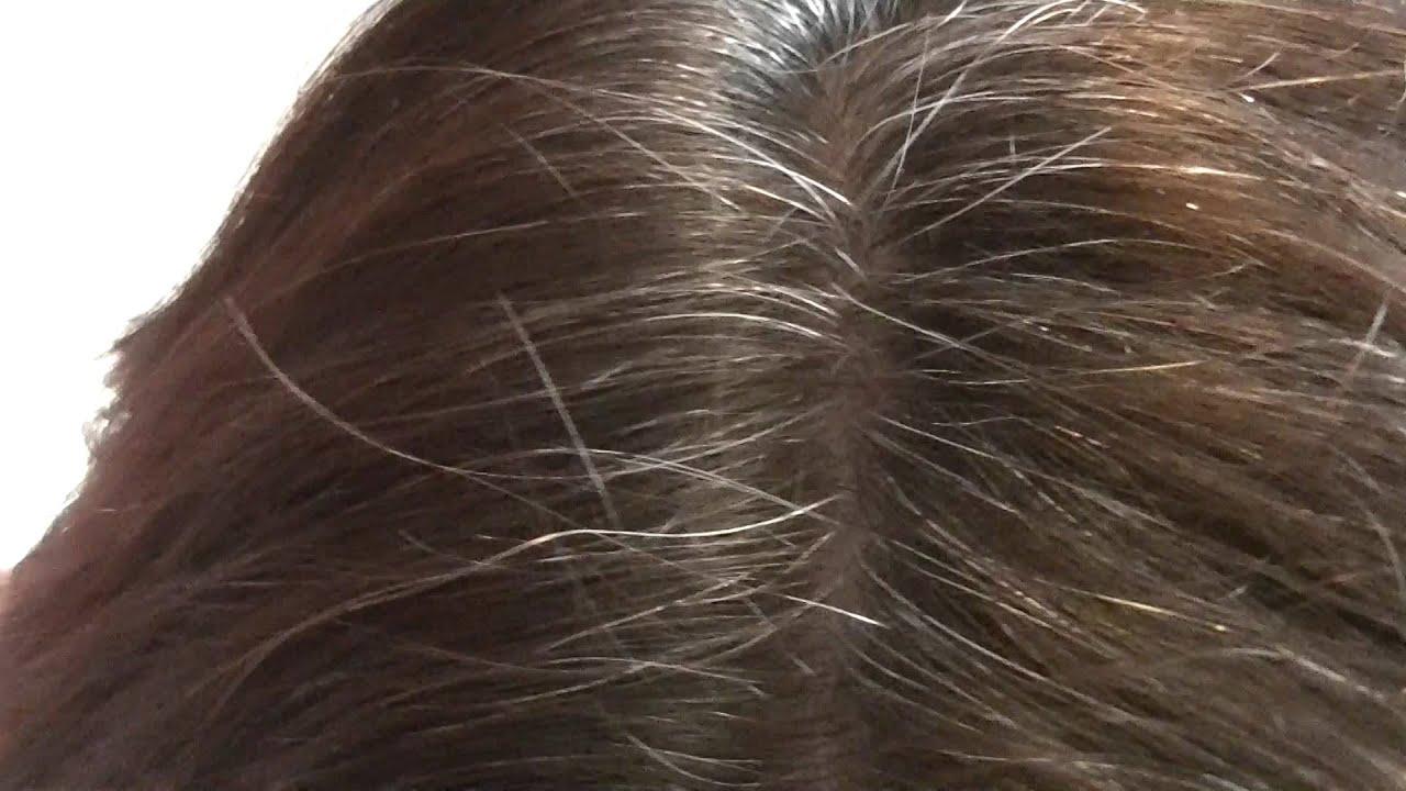 Black Walnut Hair Dye Spefashion