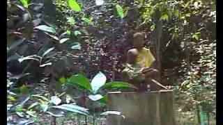 วัดป่าสุคะโต 3, Wat Pa Sukato 3