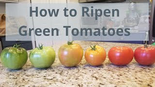 How to Ripen Gręen Tomatoes Indoors