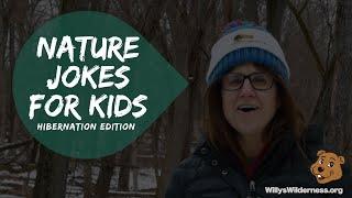 Nature Jokes for Kids: Hibernation Edition