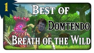 Best of Domtendo - Breath of the Wild (Part 1-50)