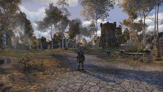 Elder Scrolls Online Max Settings - Gtx 970