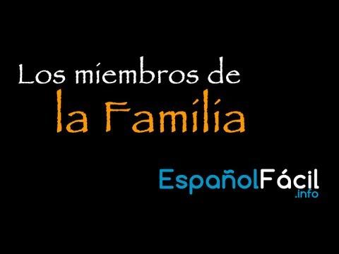 los miembros de la familia en espa241ol vocabulary fras