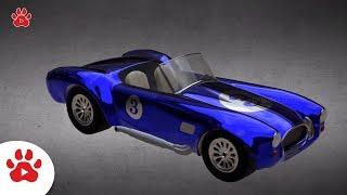 Sports SMZ RV Car TACTIXS Stock Range Rover Evoque | Super Cars for Kids | #h Colour Song for Kids