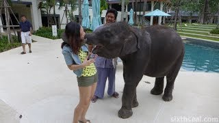 Outrigger Laguna Phuket Beach Resort 5* Таиланд, Банг тао бич