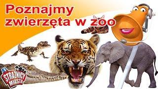 Strażnicy Miasta - Poznajmy zwierzęta w zoo