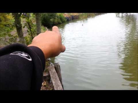 longshaw match lake