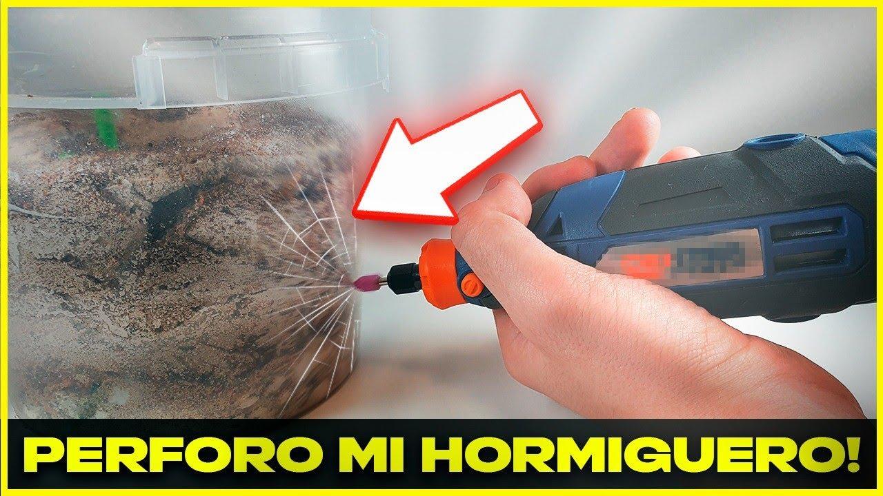 PERFORO EL HORMIGUERO PARA SALVAR A MIS HORMIGAS