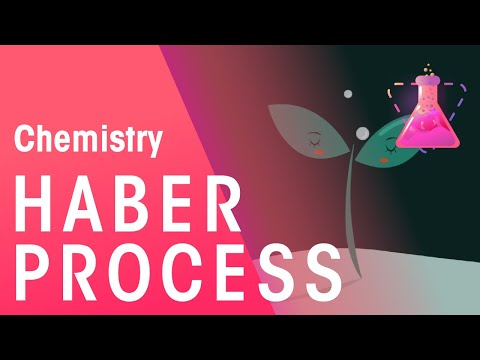 The Haber Process and its environmental implications | The Chemistry Journey | The Fuse School