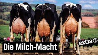 Milch-Mythos – das irre Geschäft der Molkereien
