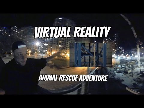 Fear of Heights - Virtual Reality Animal Rescue in Full VR - Oculus Rift 360° Video